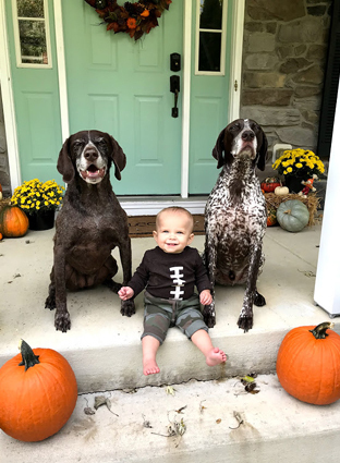 Cannon after treatment sitting with his family's dogs and pumpkins at front door of house