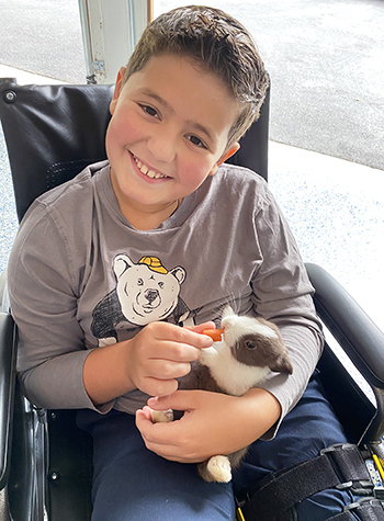 Nicolai with a bunny smiling in a wheelchair